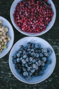frozen foraged berries
