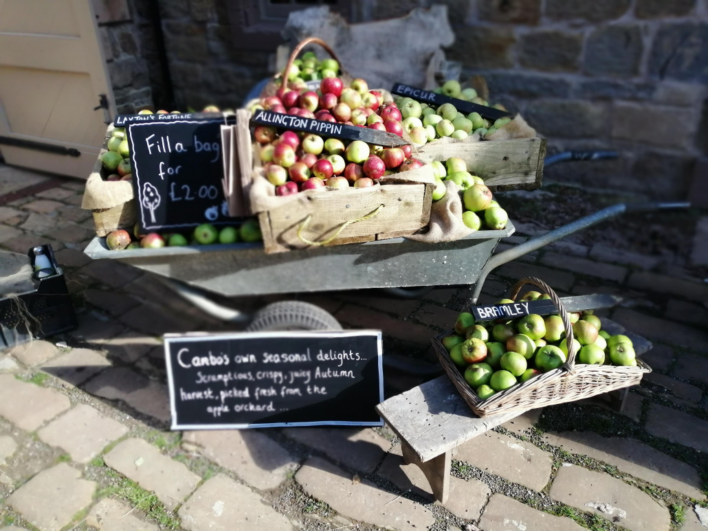 Some of the apple varieties grown at Cambo - Kitchen Quiz